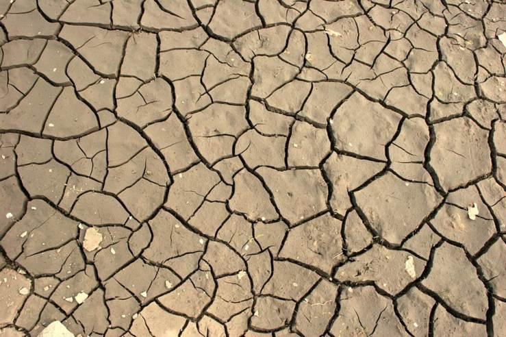 Dry Earth_Dusty People